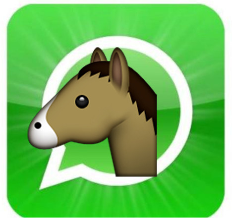 whatsapp-montagem